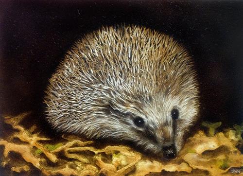 Schilderij Egel, Painting Hedgehog by Jolien Westerbroek-Hornbeck ©2018