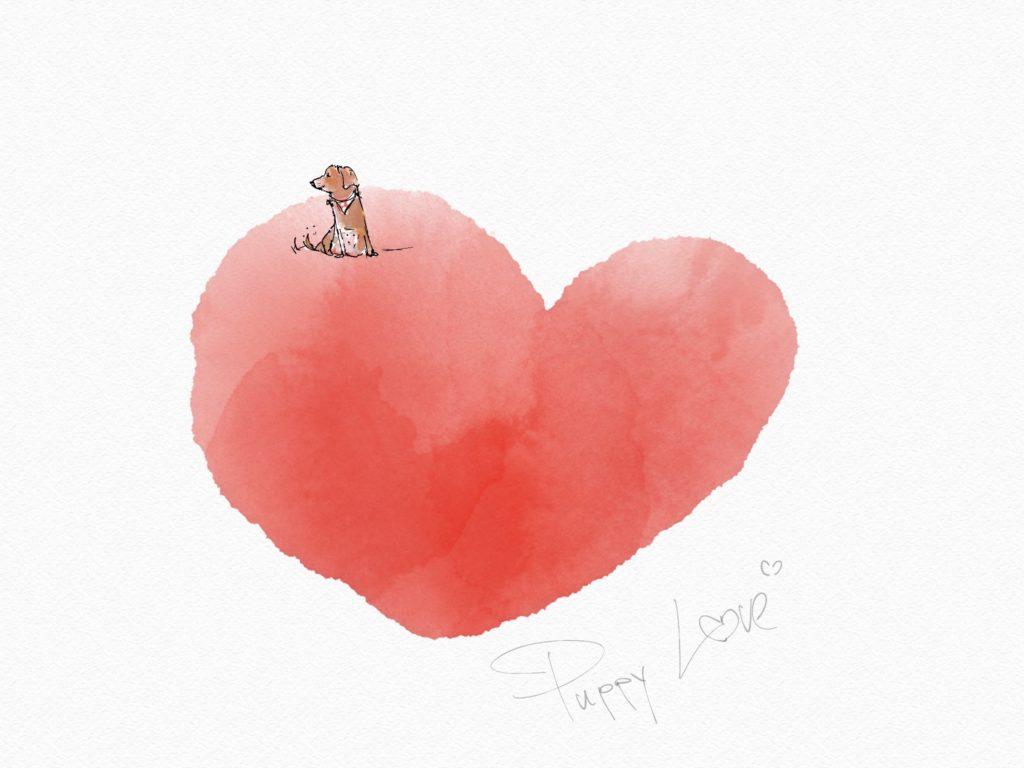 Puppy Love • hondje op groot hart • Illustratie in aquarel • digitale techniek • gemaakt door JWH